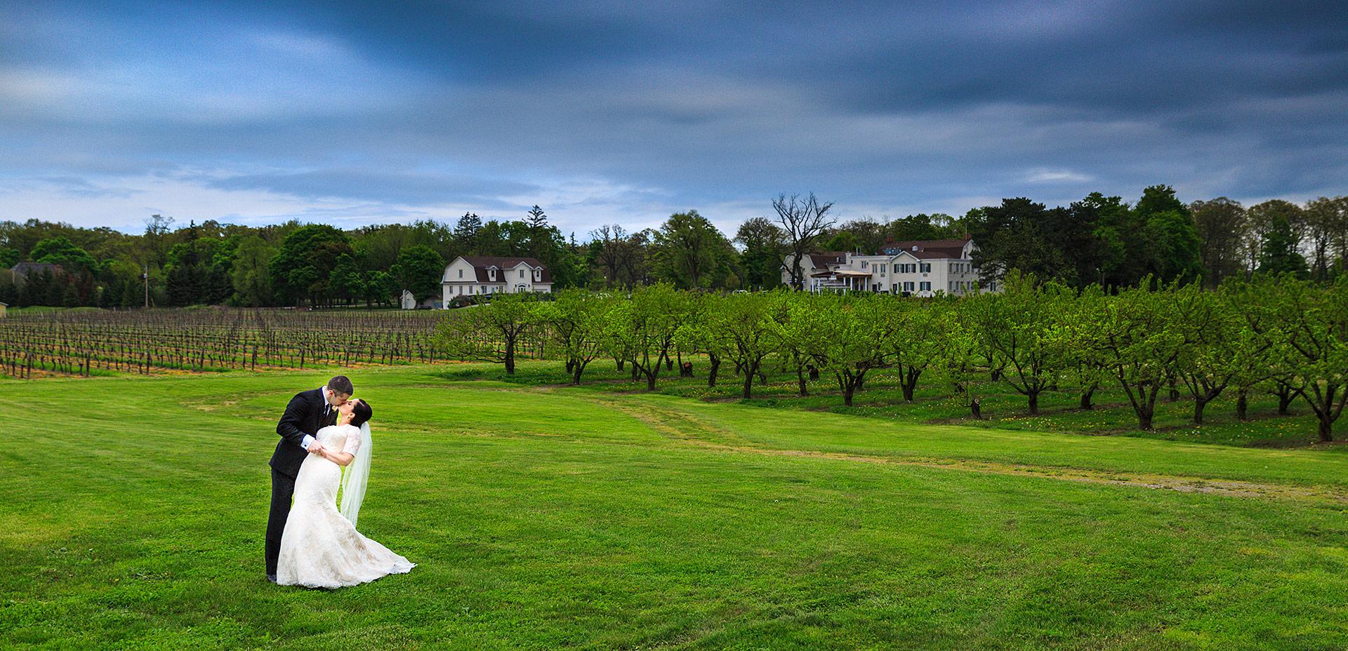 Niagara On The Lake Vineyard Wedding Photo Red Studios